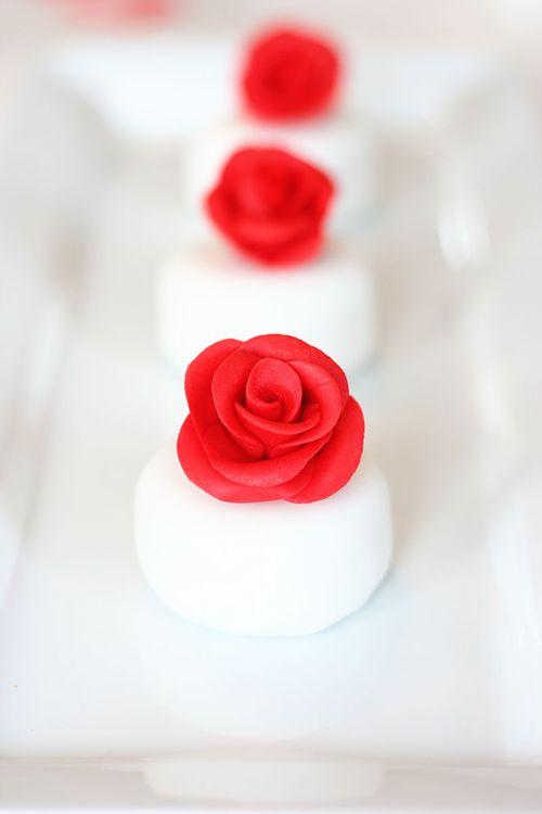 IMG_7312.rose