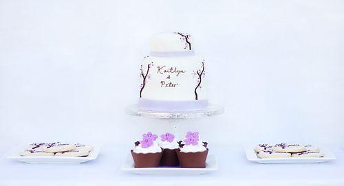 IMG_2256.cake