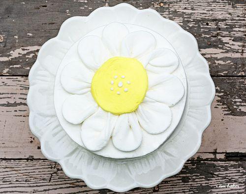 IMG_0605.flowercake