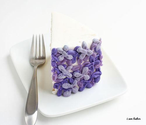 IMG_1955.lilaccake