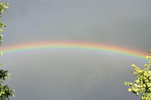 IMG_3109.rainbow